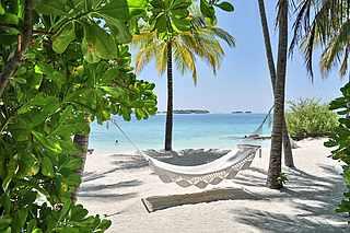 Weiße Hängematte unter Palmen am Strand