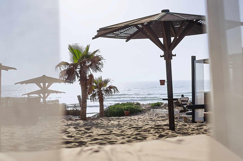 Strand und Meer mit Palmen und Sonnenschirmen
