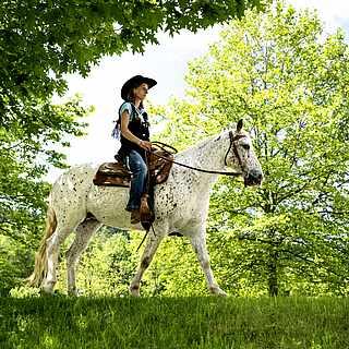 Eine Grau sitzt in Westernkleidung auf einem Westernsattel mit Westerntrense. Sie schaut geradeaus. Das Pferd ist weiß und läuft schritt. Siei befinden sich auf einer Wiese mit Bäumen darum herum.
