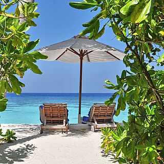 Blick aus tropischem Dickicht auf zwei Liegestühle direkt am Meer