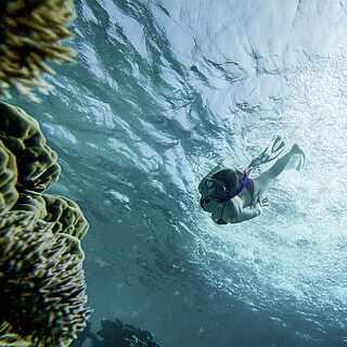 Schnorcheln, Frau im Wasser, Tauchen