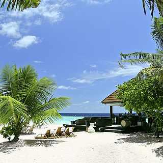 weißer Sandstrand, blaues Meer, Palmen, Liegestuhl, Sonnenschirm