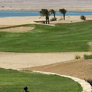Golfplatz in der Wüste mit Palmen