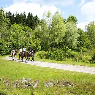 Reiter zu Pferd kommen aus einem Wald geritten