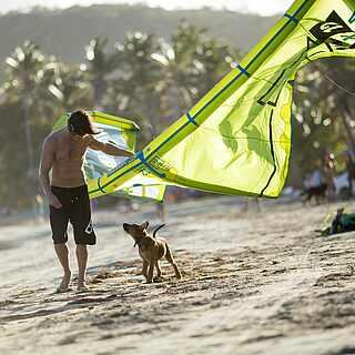 Ein Mann mit einem Kite im Arm agiert mit einem Hund. Sie laufen fast an der Wasserkante am Strand. Rechts im Hintergrund stehen Leute mit einem Auto. Allgemein im Hintergrund erkennt man Palmen.