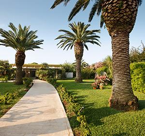 Clubanlage 3 große Palmen ROBINSON CLUB APULIA, Italien