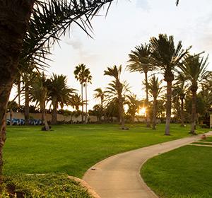 Clubanlage mit Palmen ROBINSON CLUB JANDIA PLAYA Fuerteventura